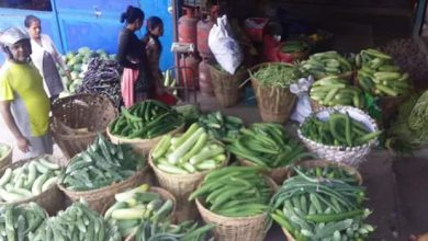 Photo of तनहुँकाे दमाैली अब हप्ताकाे ४ दिन खुल्ने, कृषि उपज बिक्री गर्न सहज हुने