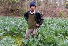 Photo of बैदेशिक राेजगारबाट फर्केका कुमालले गाउँमै कृषिकर्मबाट मनग्ये अाम्दानी