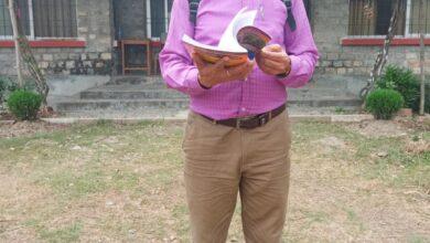 Photo of नेपाल सरकारले सामुदायीक शिक्षकहरूको सम्मान गर्न सकेन